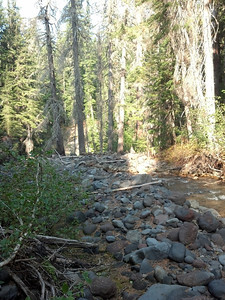 Looking downstream from the creek crossing
