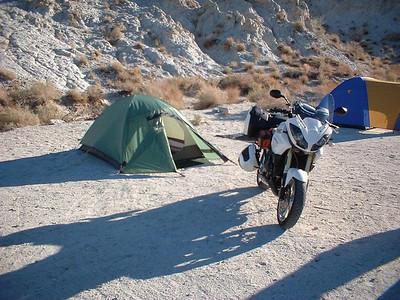 tiger & tent