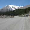 Northern British Columbia with wildlife