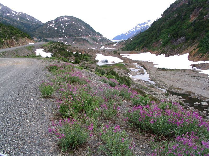 Back towards Hyder, the low spot on the right is usually a lake, but drains periodically under the glacier.