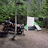 Campsite, Fish Creek Campground, Glacier National Park