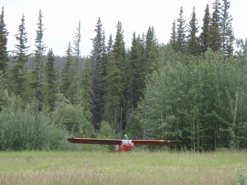 We made a gas stop and there was this plane parked in a field...just looked like a strange spot to park.