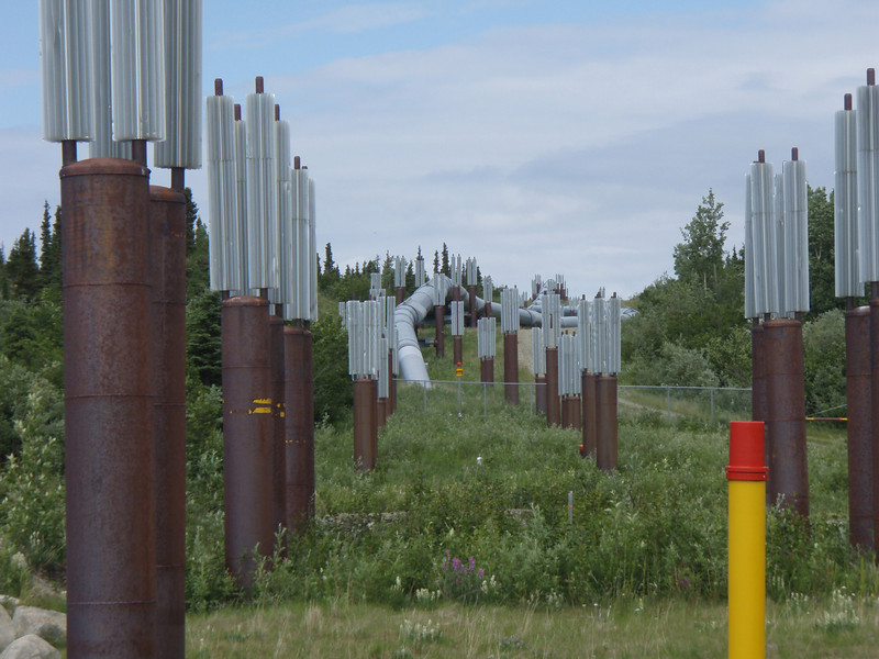 These are thermal posts that somehow use the heat from the earth to warm the pipeline