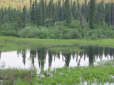 Alaska Trip 6-24-2004