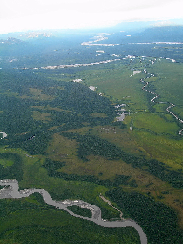 Flying NW with the Talkeetna, Susitna and Chukitna Rivers below. Some of the best salmon fishing in the world.