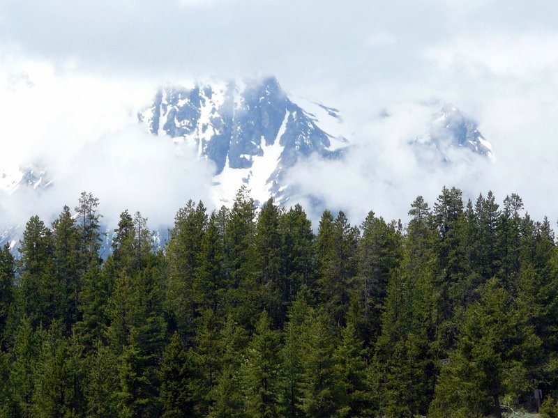Grand Tetons were covered with clouds. This was the best view.