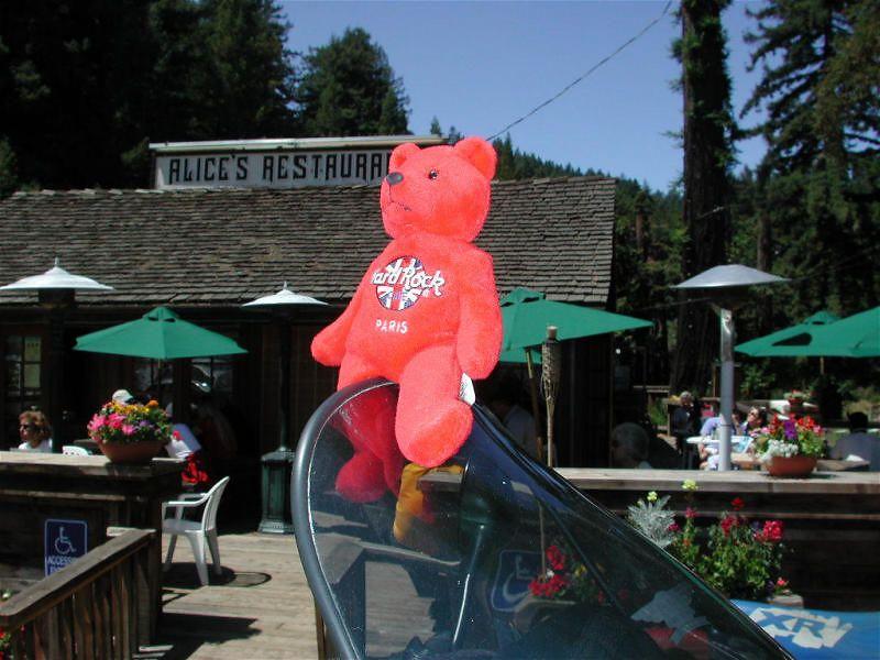 Lil Red Bear