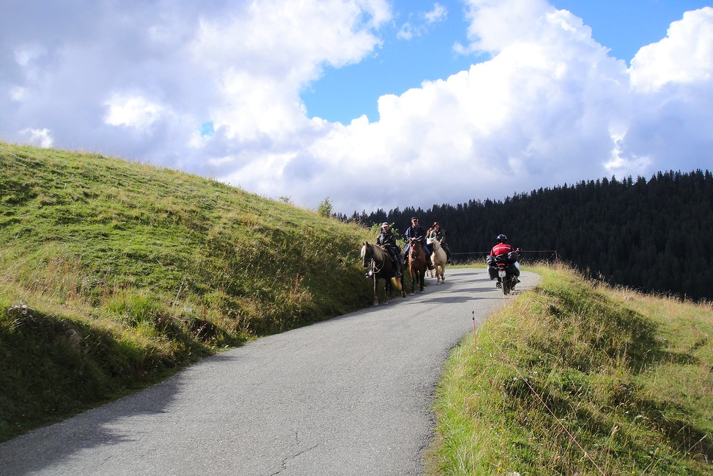 Now we're talking about real horse power - Col du Pre France