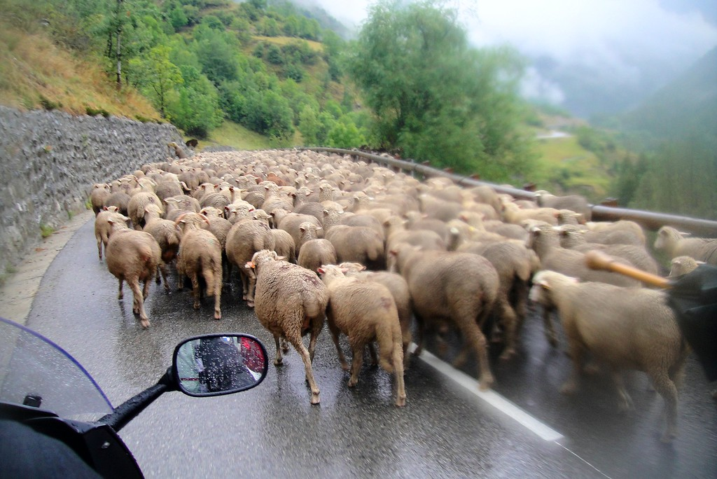 We see a lot of this herd mentality in France and Italy - Col  de Vars France