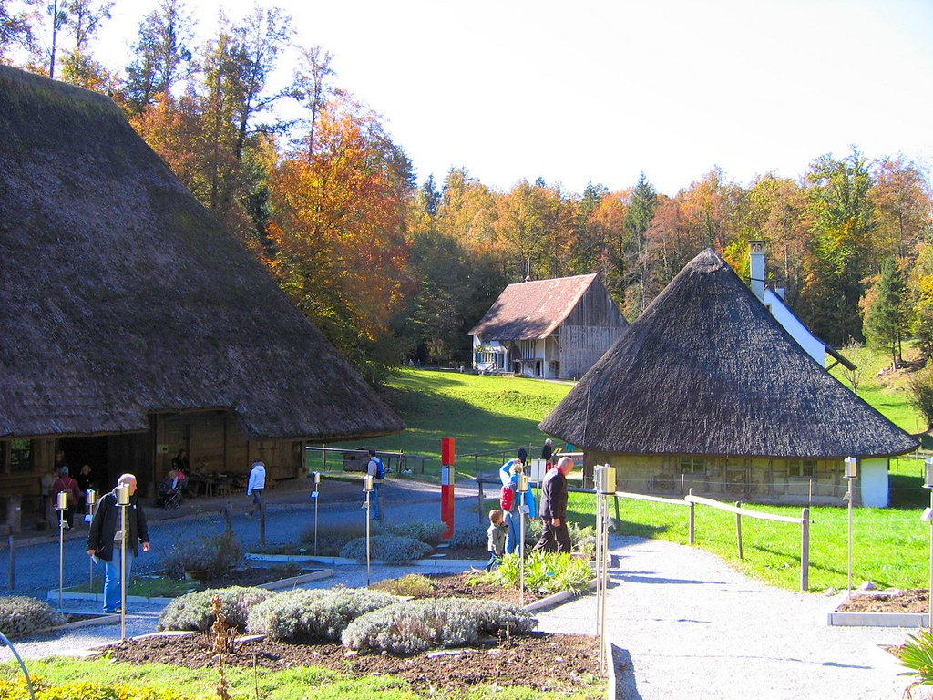 If you have extra time visit the huge outdoor museum of Swiss culture and history at Ballenberg - it's very interesting