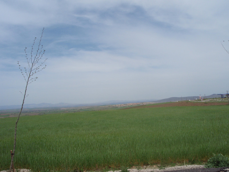 the Anatolian Plain - Agriculture strong everywhere