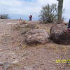 Here is Josh examining his tire track leading to the boulder.