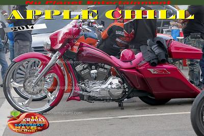 APPch17fv-0009