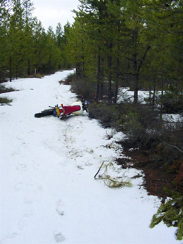 Until, that is.... 