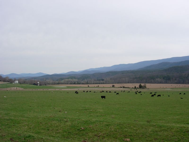 Parsons' Farm, South Fork Valley, Hardy County, WV