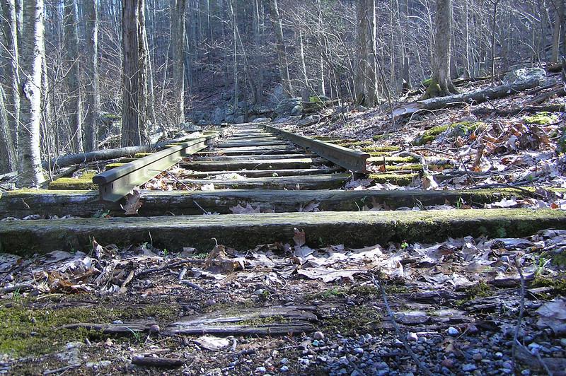 narrow gage rail