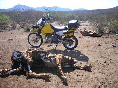 AZ Day Trip 2012-07-05