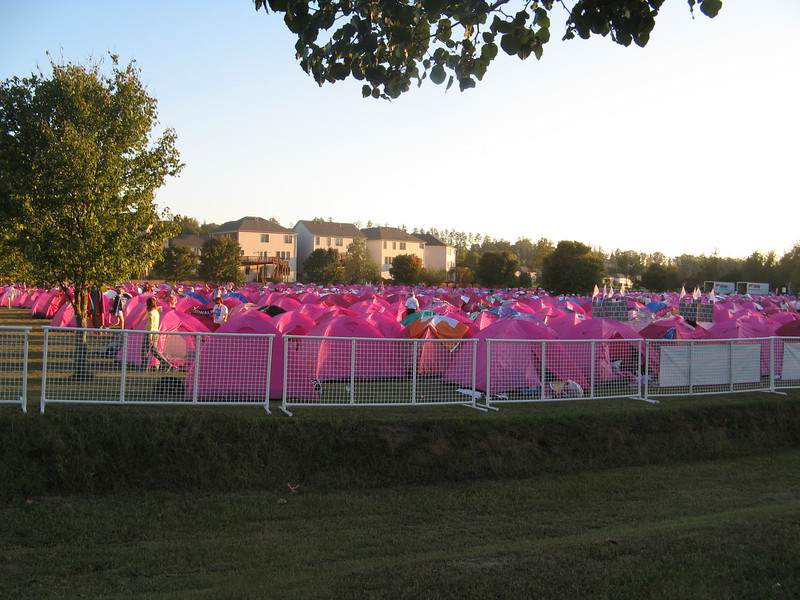 Pink camp city this year