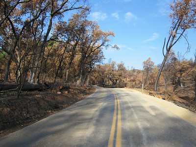Out Platina Road, through the Bully Fire area.