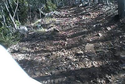 worst_uphill_Rocky_Track