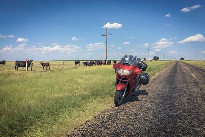 Texas Panhandle farm road.