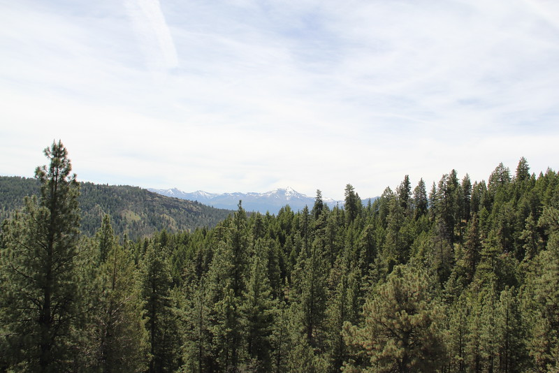 Strawberry mountain range