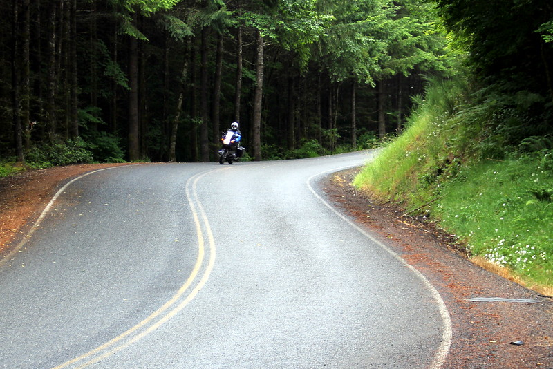 Russ Darr led a group ride to Mt. S. Helens by way of this nice road called Lost Valley Rd. east of Pe Ell.