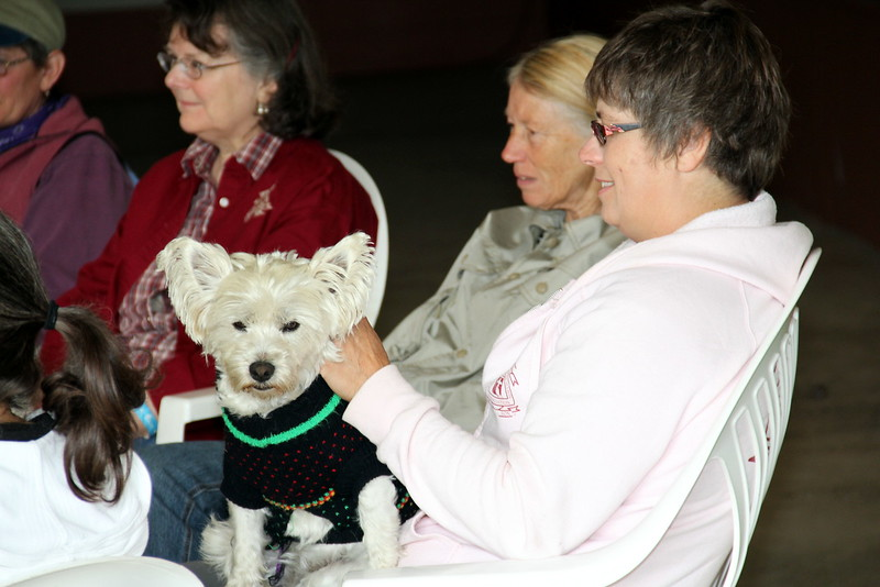 """Peggy Zander led a ladies discussion group Saturday morning called """"Mug and Muffin"""""""