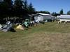 Shady camp