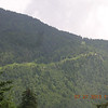 This is the Old Mt Mitchell Trail.  I think.