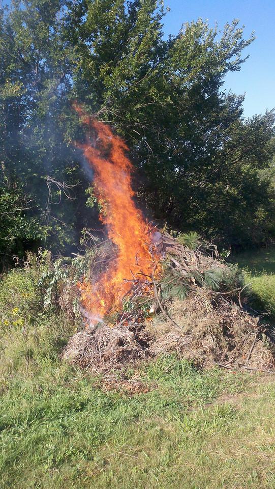 Thursday Bonfire