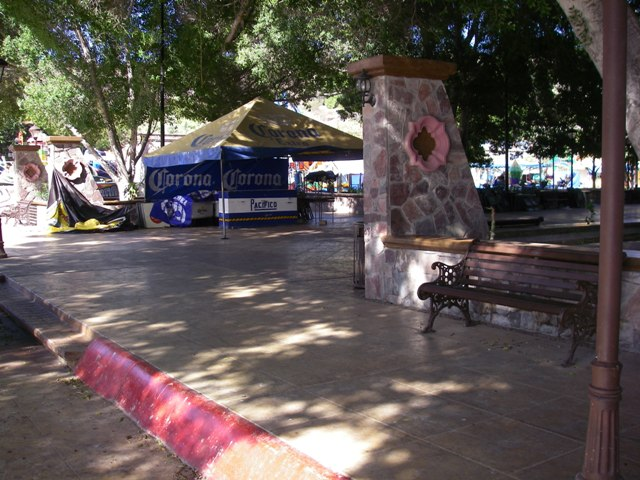 The Oasis of San Ignacio