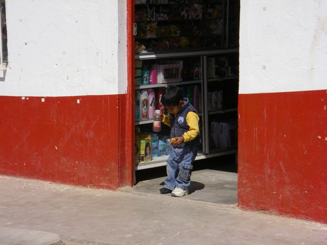 Back in Vizcaino, I visited this little store for a pen and notepad and this little guys kept a close eye on me.