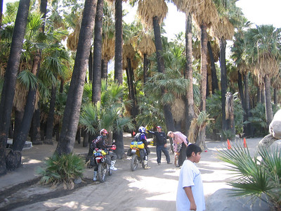 Guadalupe Canyon.