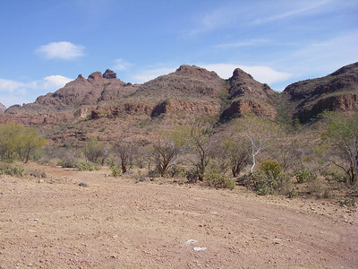 """Head west from Mulege on the San Raymundo wash road, then North at the """"Y"""" towards Magdalena.  The road gets a little more rugged here as you start to ascend the sierra a little."""