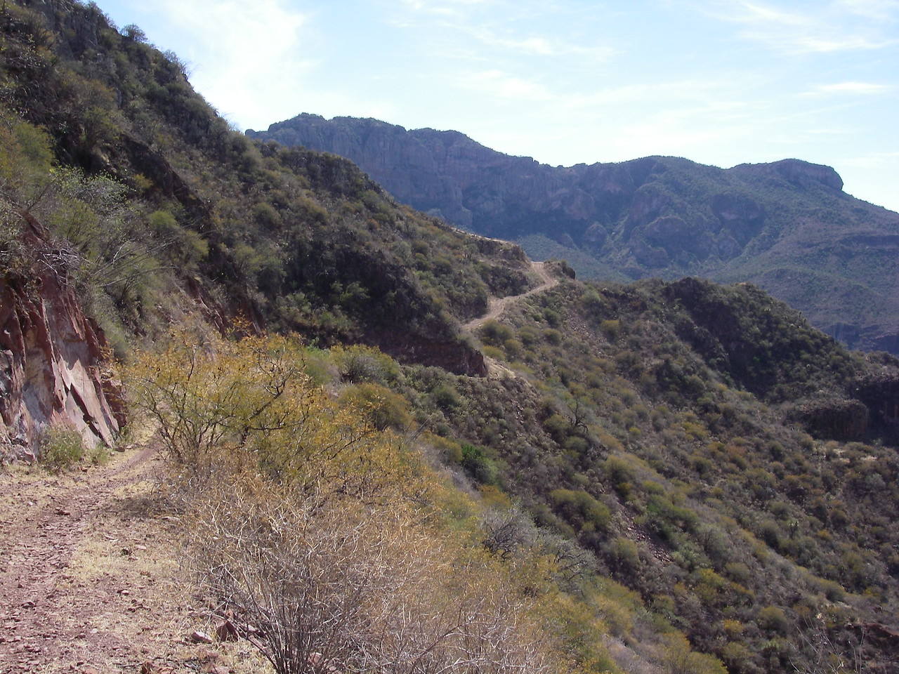 OK let's head down into the San Pedro canyon, the goats must love this route.