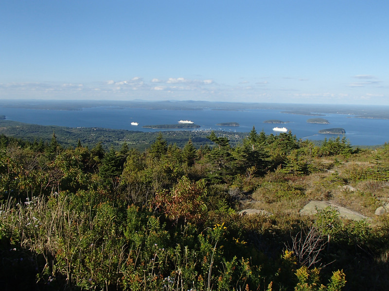 Looking out over Bar Harbor. You can see three cruise ships and a lot of pretty little boats out there, as well as all the unfortunate Porcupine Islands.