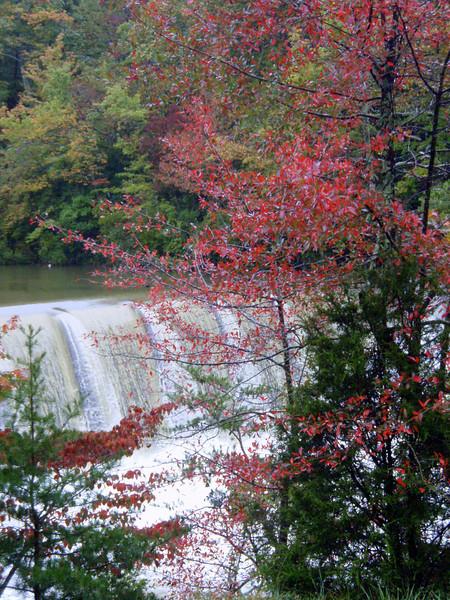 Fall in Alabama