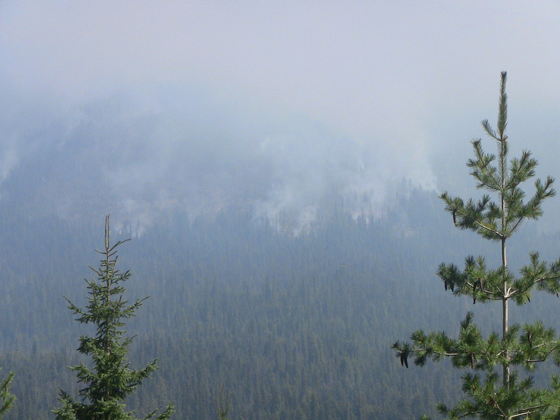 fire across the valley from TransCanada 1 east of Rogers Pass
