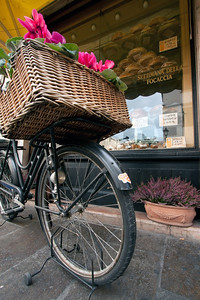 Bottega Bike, Bassano