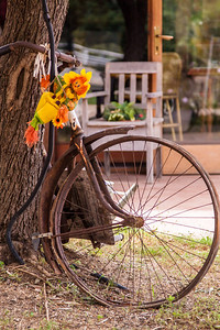 South Sardinian Bike