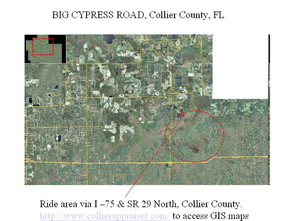 """Caution: this ride is illegal for motorcycles, as $300 and the last picture shows, but it is a beautiful area of S. Florida only open to swamp buggies. Go to  <a href=""""http://www.collierappraiser.com"""">http://www.collierappraiser.com</a> to access high resolution GIS maps of Collier County."""