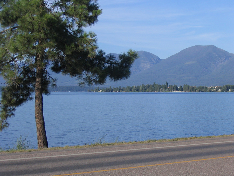 Flathead from the motel in Polson