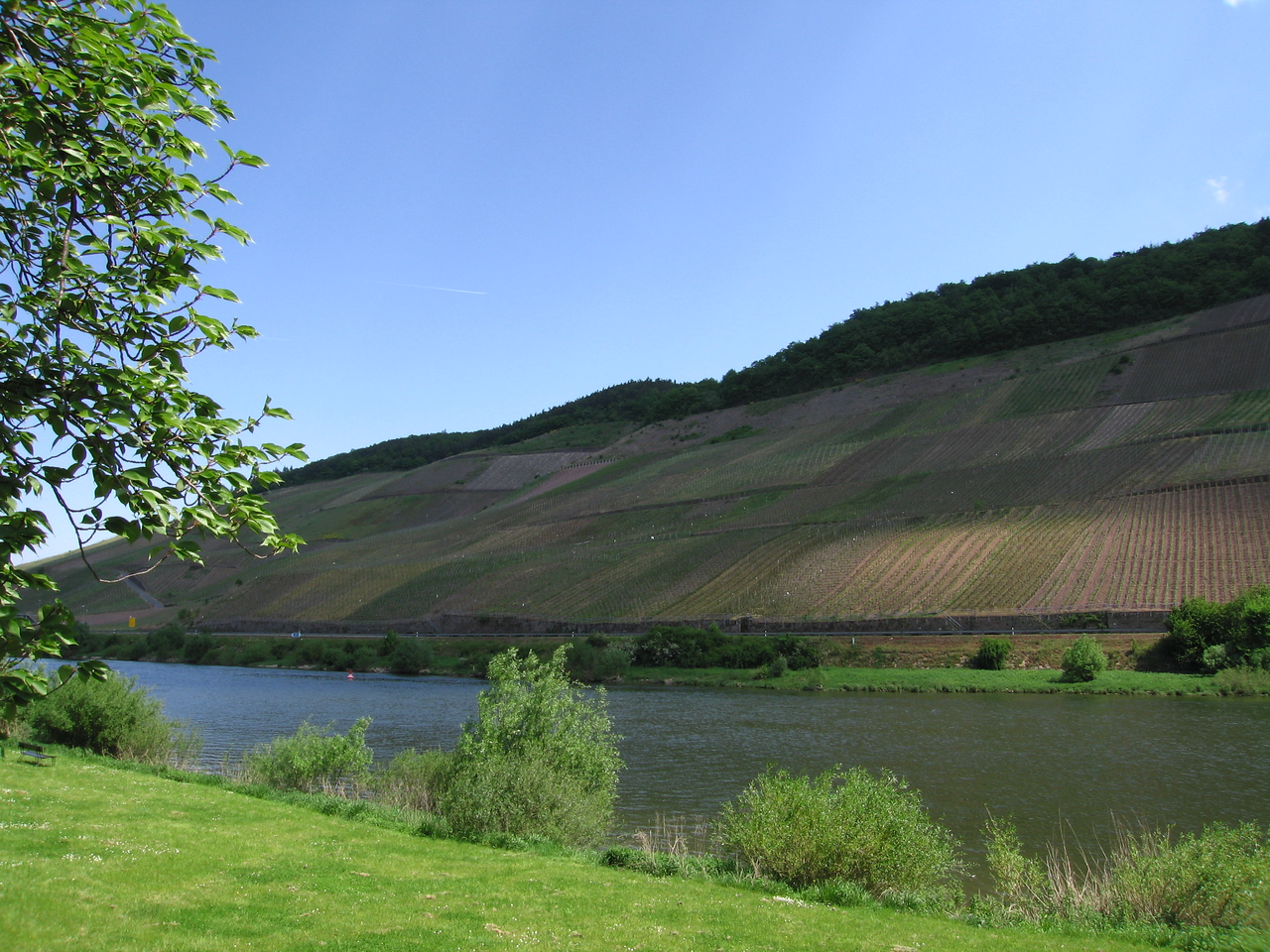 Standing on Luxembourg soil, Germany is on the other side of the Mosel.