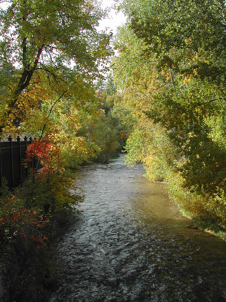 Spearfish Creek with Fall colors
