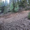 This is the last right hand switchback before rolling out onto Boulder Top.  Still one more uphill section of trail to go.