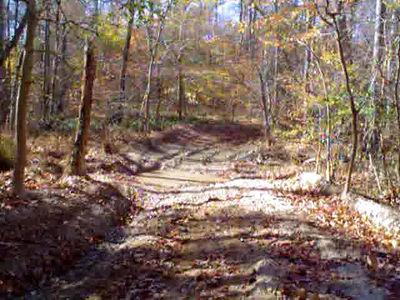 Budd's Creek Riding