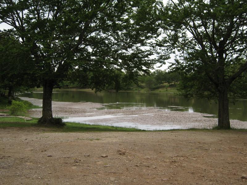 Il lago: sempre in forma.