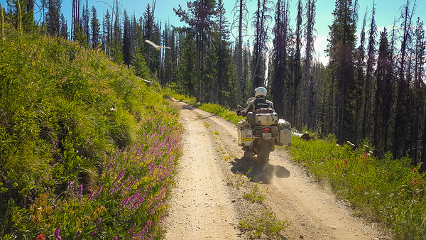 Idaho Backcountry Discovery Route- 2017
