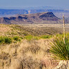 Top center of photo - The view from Sotol Vista - Santa  Elena Canyon is the most impressive in Big Bend National Park - it is visible 14 miles away. Pictured in the foreground is a sotol plant